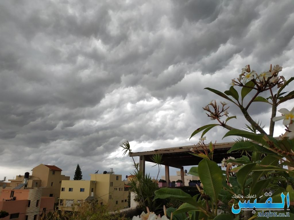 تصوير: القبس